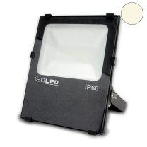 LED Fluter Prismatic 50W, warmweiß, anthrazit, IP66